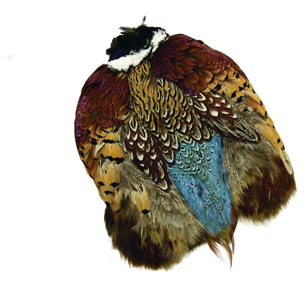 Wapsi Ringneck Pheasant...