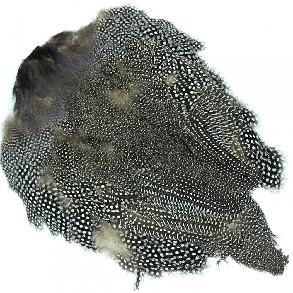 Wapsi Guinea Skins