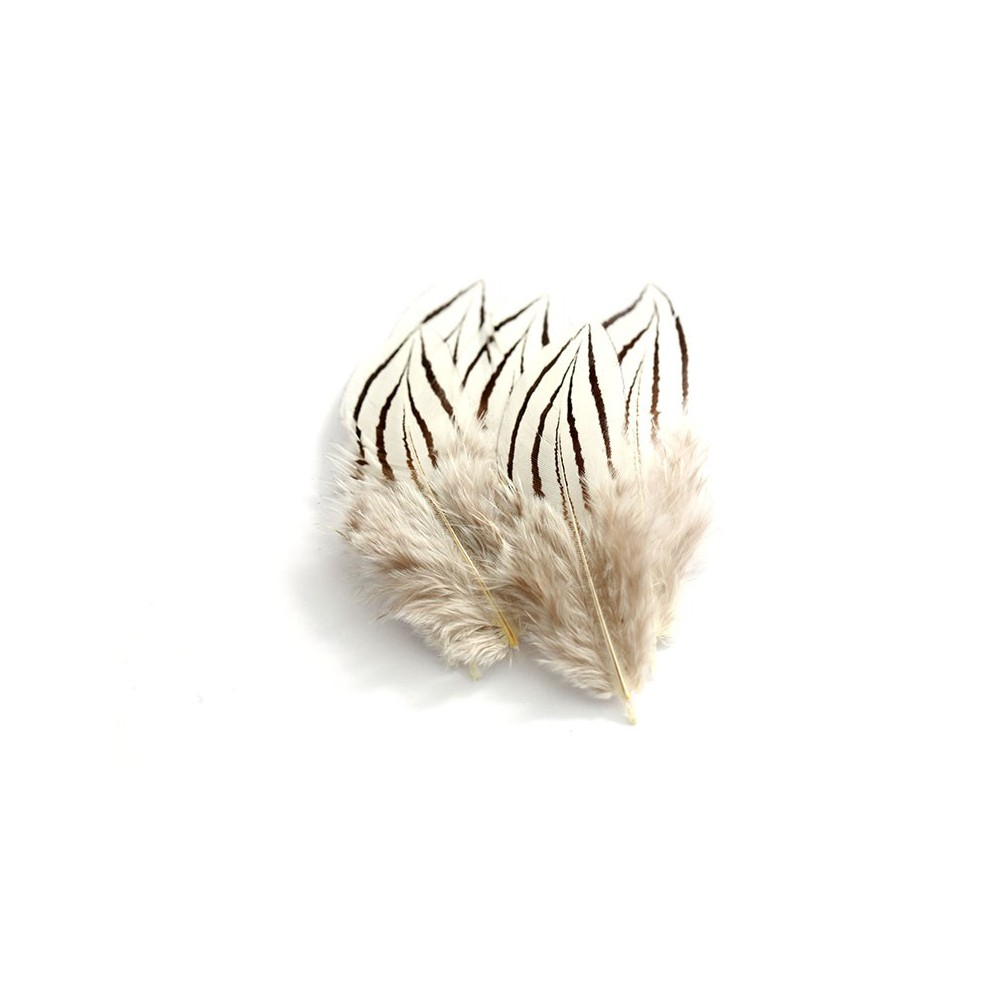 Wapsi Silver Pheasant Cheeks